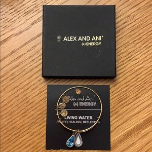 Alex and Ani (+) Energy Bracelet - Living Water
